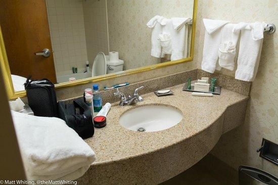 Hilton Orlando Altamonte Springs : Bathroom sink
