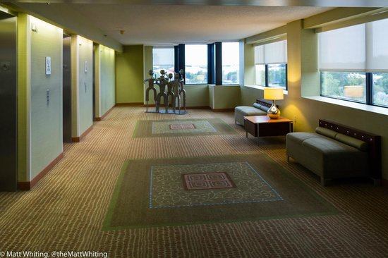 Hilton Orlando Altamonte Springs : reception area outside of lifts