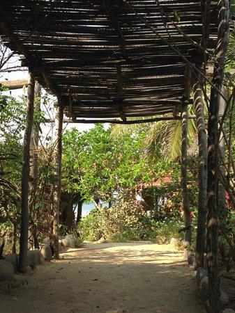 Playa Viva: Entrada al hotel