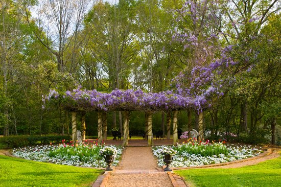 Monmouth Historic Inn and Gardens (Natchez, MS): Top Tips Before ...