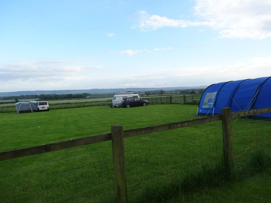 Betton Farm : the camping field