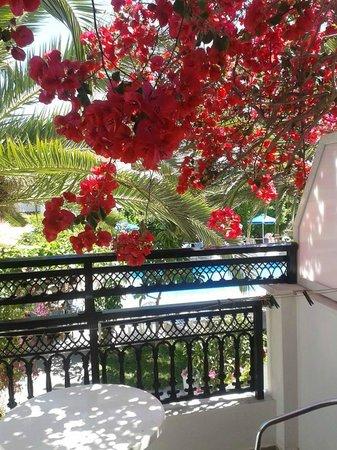 Villa Anna Studios: Room 13 balcony