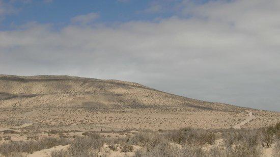 Laguna de Sotavento : Playa de Sotavento Hinterland