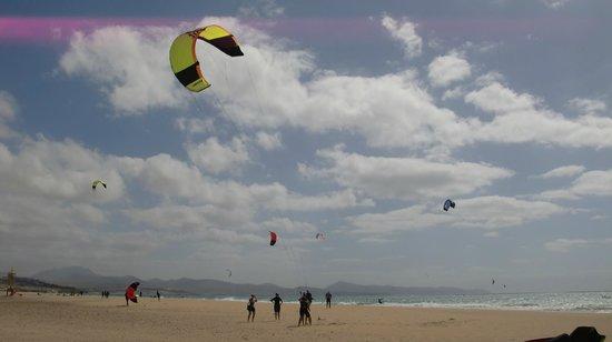 Laguna de Sotavento : Playa de Sotavento Strand