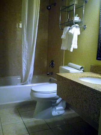 Best Western Plus Franklin Square Inn Troy/Albany: small but nice