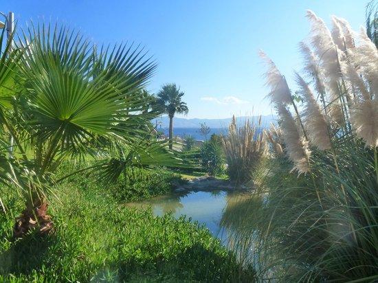 Kefaluka Resort : very well maintained gardens