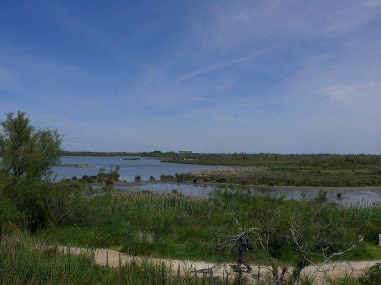Le Parc Ornithologique de Pont de Gau : gli stagni del giro lungo
