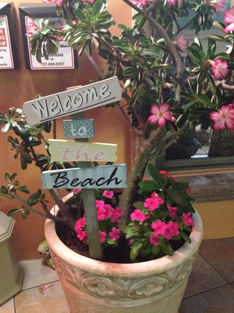 Plaza Beach Hotel - Beachfront Resort: Welcome out front