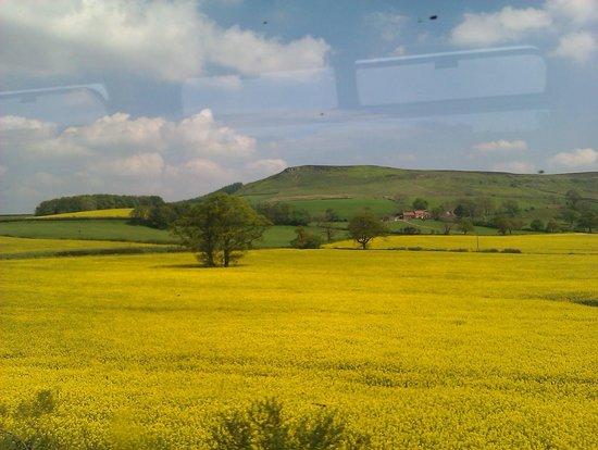 Esk Valley Railway: view