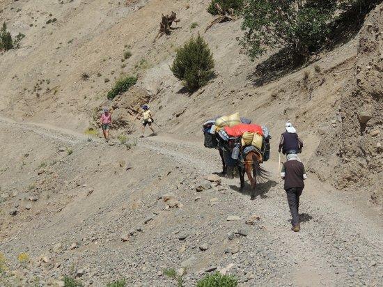 Dar Daif : treck dans les hauts atlas