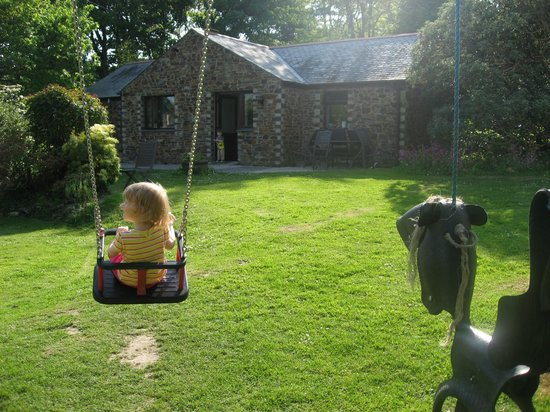 Bosinver Farm Cottages: Garden outside Olearia