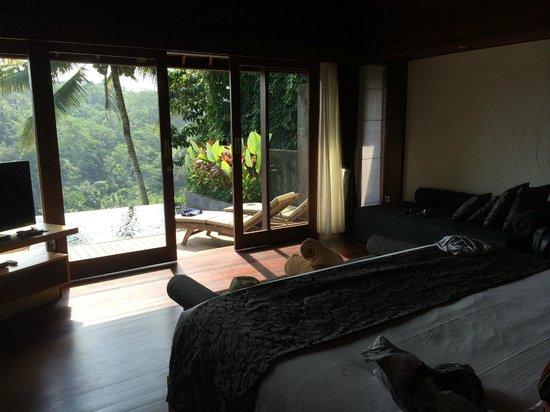 Black Penny Villas Ubud : Room view