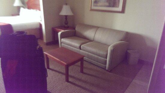 Holiday Inn Express Port Charlotte: Sofa