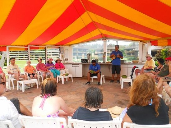 Napili Kai Beach Resort: One of the morning events