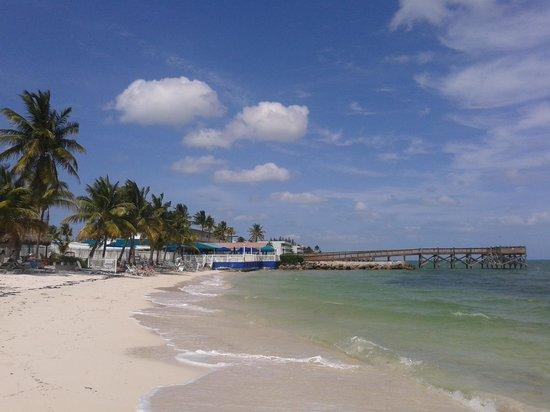 Key Colony Beach Motel : small paradise