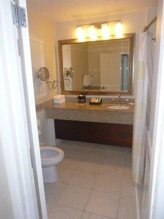 Beaches Ocho Rios Resort & Golf Club: Bathroom in our suite