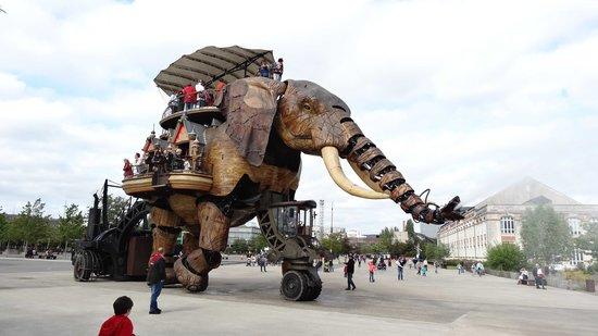 Les Machines de L'ile : Elephant