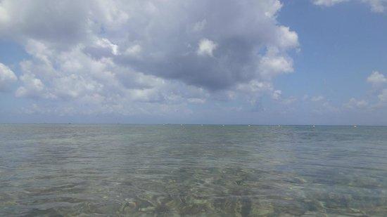 Iberostar Cozumel : Aguas transparentes