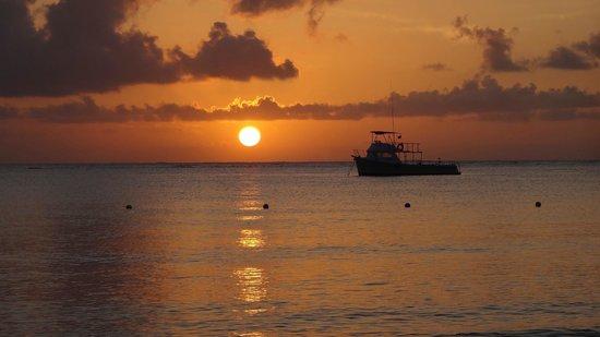 Iberostar Cozumel : Puesta de Sol desde la playa