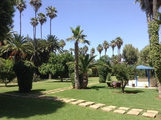 Hotel Ibis Fes: sehr schöner Hotelgarten