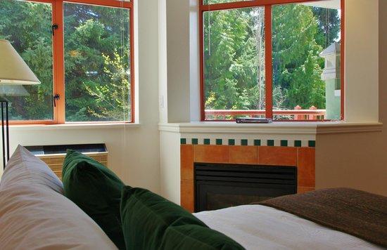 Alpenglow Lodge: Queen Studio