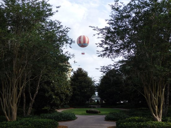 Disney's Saratoga Springs Resort & Spa: View from the garden