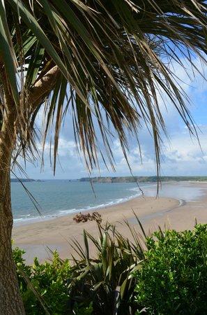 Glenholme Apartments: Beach view 50 yards away