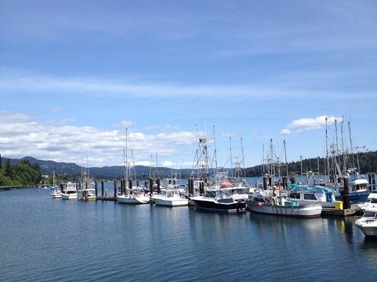 Sooke Harbour Resort and Marina : a view to die for