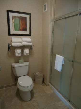 Homewood Suites by Hilton Cedar Rapids North: Banheiro do Quarto