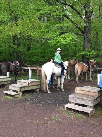 Deer Path Riding Stable: Loading Up