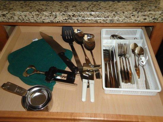 Homewood Suites by Hilton Cedar Rapids North: Utensílios da Cozinha