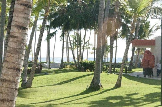 Barcelo Bavaro Beach - Adults Only: Esa es la vista por haber pagado Ocean Front... no vale la pena.