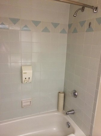 Cartier Place Suite Hotel: dated shower