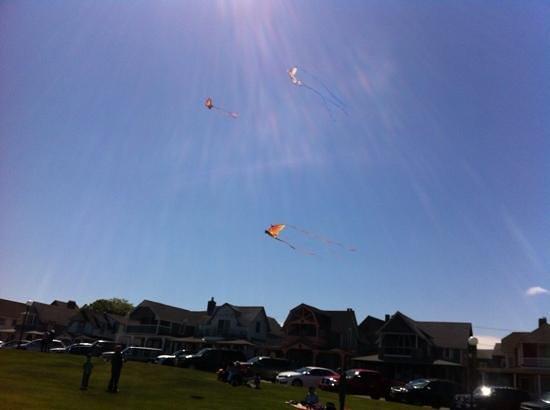Martha's Vineyard Camp meeting Association (MVCMA): kite flying!