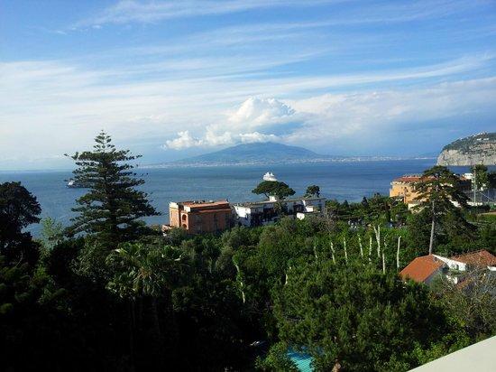Hotel La Meridiana: View from Hotel terrace of Mount Vesuvius