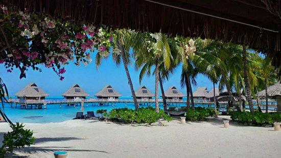 Conrad Bora Bora Nui : view from the bar