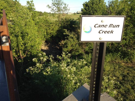 Cane Run Creek at the Legacy Trail