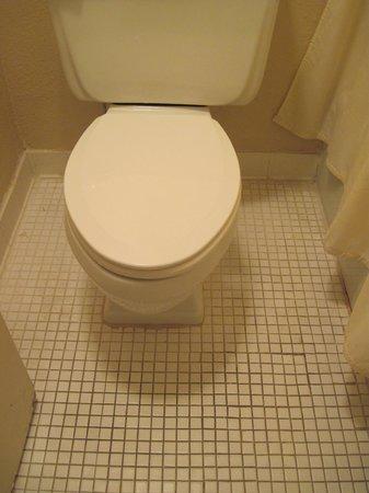 Hawaiian Inn: nasty bathroom