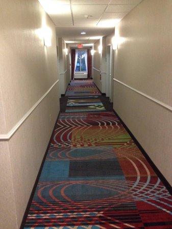 Holiday Inn Express Stroudsburg - Poconos: Hallway