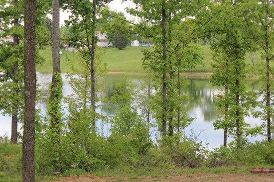 Happy Hills Campground and Cabins: View from campsite #77
