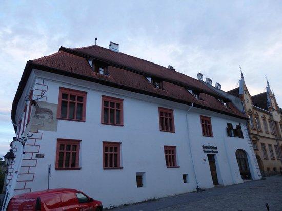 Casa cu Cerb: Hotel