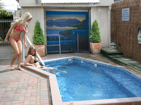 MALFROY motor lodge Rotorua - Accommodation and Mineral Pool: Plunge Pool