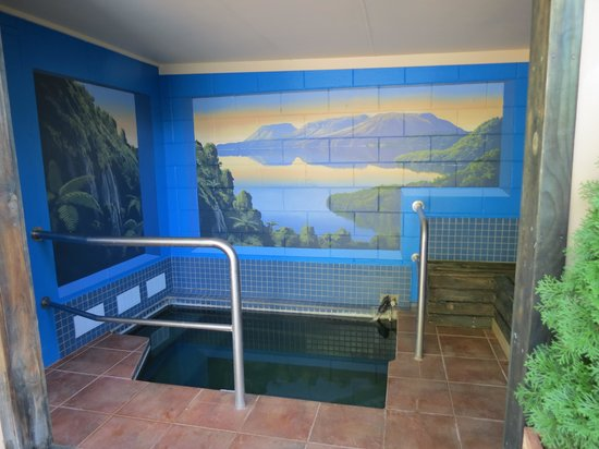 MALFROY motor lodge Rotorua - Accommodation and Mineral Pool: Mineral Pool