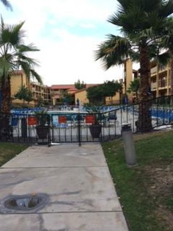 Embassy Suites by Hilton Hotel Palm Desert: pool area