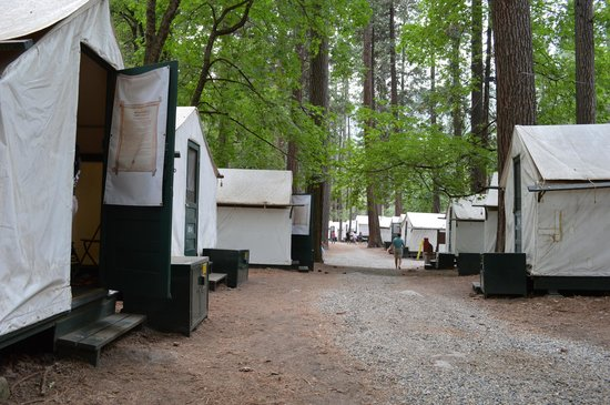 Half Dome Village: a row of tent cabins