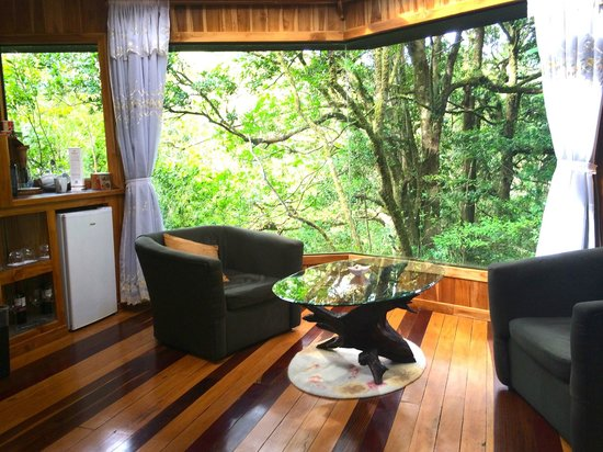 Hidden Canopy Treehouses Boutique Hotel: Glade room view
