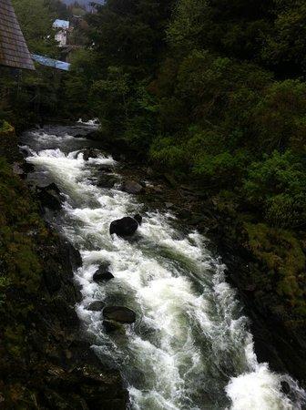 The Creek at Creek Street