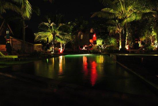 Desa Seni, A Village Resort: pool