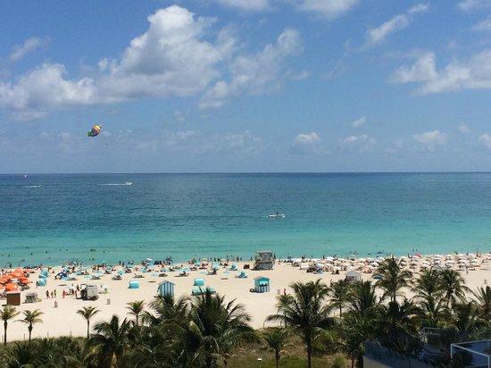 Royal Palm South Beach Miami, A Tribute Portfolio Resort: View from my room