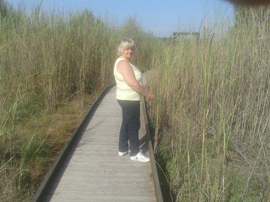 Costanza Beach Club : pont en bois pour aller à la plage